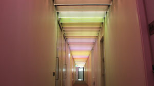 Bespoke glass fin SPI controlled ceiling light feature   Bespoke lighting design   The Light Lab